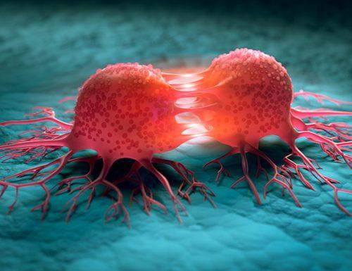 Cellule tumorali: cosa sono e come funzionano